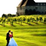 chateau-elan-wedding-couple